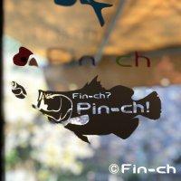 「Fin-ch? Pin-ch!」 カッティングシート